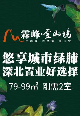深圳霖峰壹山境