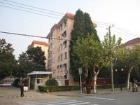 石化十三村(金山)