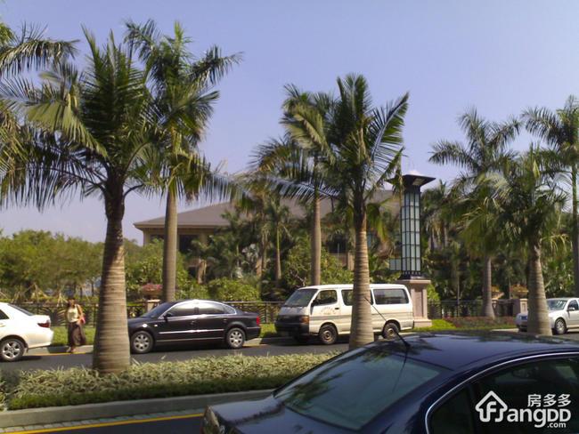 广州星河湾海怡半岛是哪个开发商的?