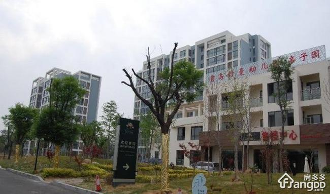 青岛厚德森林国际物业公司