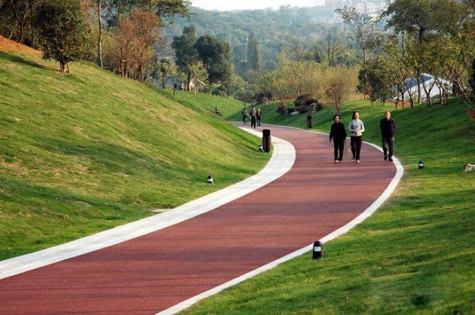 针对龙泉山,还将实施生态提升工程,工程涉及龙泉驿区,新都区,青白江图片