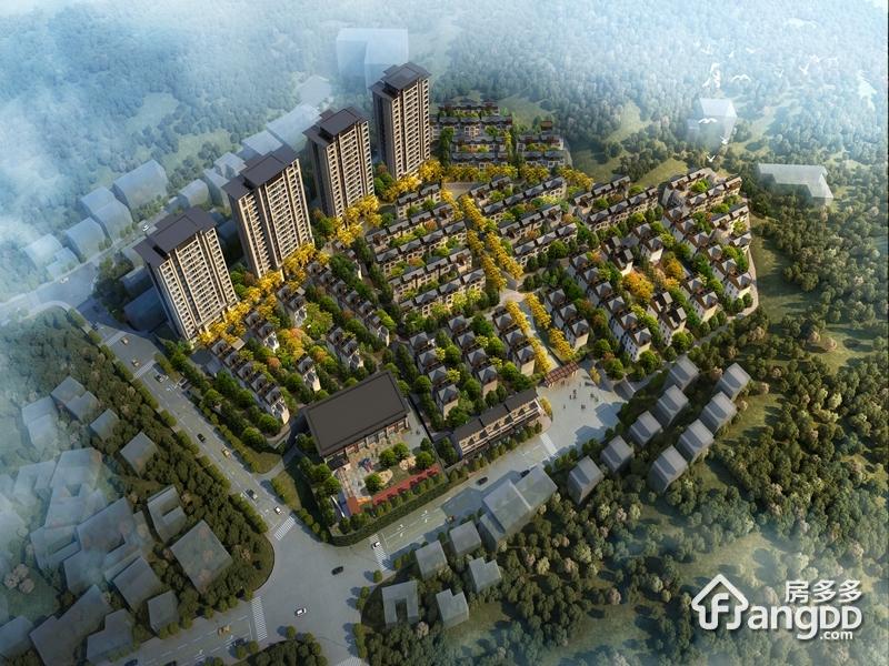 泰禾桂山院子