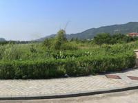 锦江花城(别墅)
