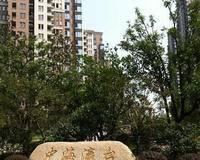 中海瀛台小区图片