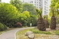 竹园高层小区图片